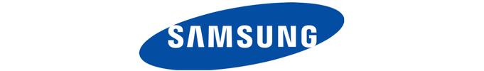 Merizon partnerem roku Samsunga w dziale Telewizja Hotelowa